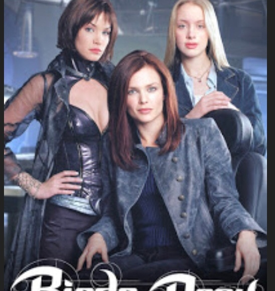 Did You Know They Had A Birds Of Prey Tv Show A Review Tower City Media